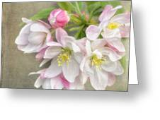 Blossom Festival Greeting Card
