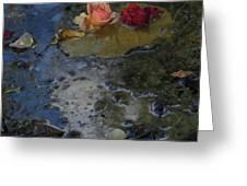 Blossom Rain 13 Greeting Card
