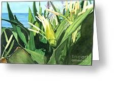 Blossoming Butterfly Ginger Greeting Card