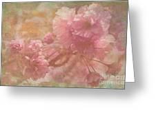 Blossoms Splender Greeting Card