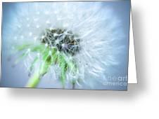 Blowball  - Blue Greeting Card
