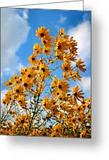 Blowin In The Wind Greeting Card by Kristin Elmquist