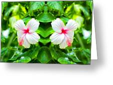 Blowing In The Breeze Mirror Image Greeting Card