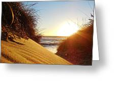 Blowing Sand Dune 12 11/03 Greeting Card