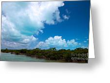 Blue 1 Of 5 Greeting Card