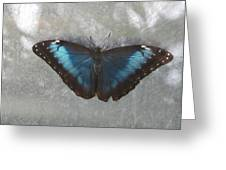Blue And Grey Greeting Card