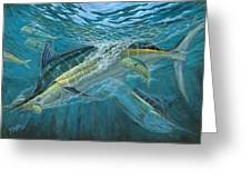 Blue And Mahi Mahi Underwater Greeting Card by Terry Fox
