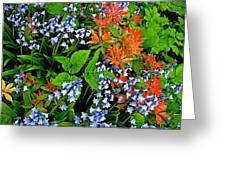 Blue And Red Flowers In Kuekenhof Flower Park-netherlands Greeting Card