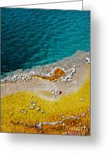 Blue And Yellow Greeting Card