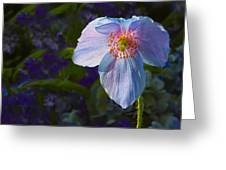 Blue As Blue Greeting Card