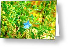 Blue Belle Greeting Card