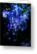 Blue Bells Greeting Card by Scott Allison
