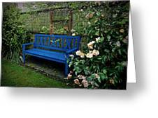 Blue Bench With Roses Greeting Card