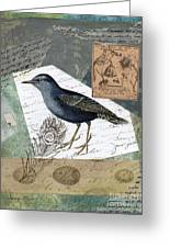 Blue Bird Study Greeting Card