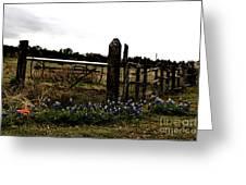 Blue Bonnet Fence V4 Greeting Card
