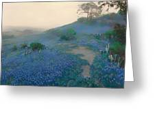 Blue Bonnet Field In San Antonio Greeting Card