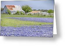 Blue Bonnets Barn V2 Greeting Card