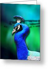 Blue Boy 2 Greeting Card