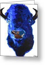 Blue Buffalo Greeting Card