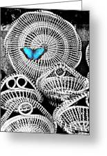 Blue Butterfly Charleston Greeting Card