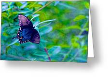 Blue Butterfly Fantasy Greeting Card