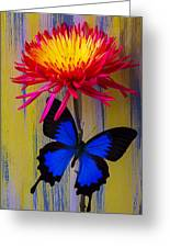Blue Butterfly On Fire Mum Greeting Card