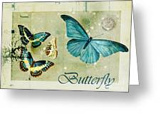 Blue Butterfly - S55c01 Greeting Card by Variance Collections