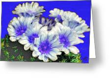 Blue Cactus Flowers Greeting Card