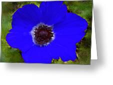 Blue Calanit Magen Greeting Card