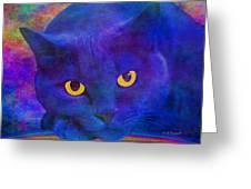 Blue Cat Ponders Greeting Card