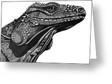 Blue Cayman Iguana Greeting Card
