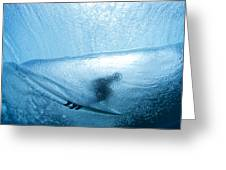 Blue Cocoon Greeting Card by Sean Davey