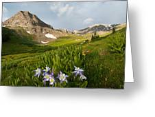 Handie's Peak And Blue Columbine On A Summer Morning Greeting Card by Cascade Colors