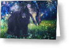 Belgian Sheepdog Art Greeting Card