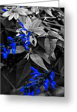 Blue Drippings Greeting Card