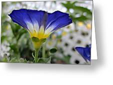 Blue Enchantment Side Greeting Card