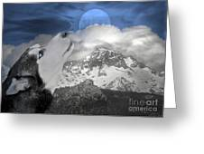 Blue Eyed And Moon Greeting Card