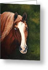 Blue Eyed Bum Greeting Card