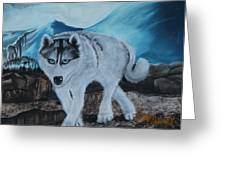 Blue Eyed Husky Greeting Card