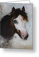 Razzle The Miniature Horse Greeting Card
