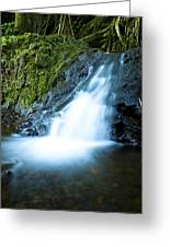 Blue Falls Off The Beaten Path Greeting Card