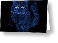 Blue Feral Cat - 9905 F Greeting Card