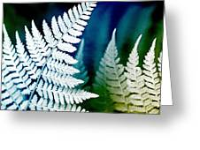 Blue Fern Leaf Art Greeting Card
