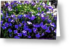 Blue Flowers On Sun Greeting Card