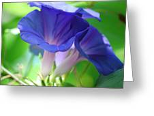 Blue Flutes Greeting Card