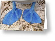 Blue-footed Booby Feet  Greeting Card