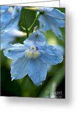 Blue Fragil Greeting Card