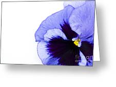 Blue Frost Greeting Card
