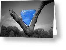Blue Glass Art Greeting Card