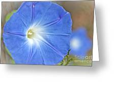 Blue Glories Greeting Card